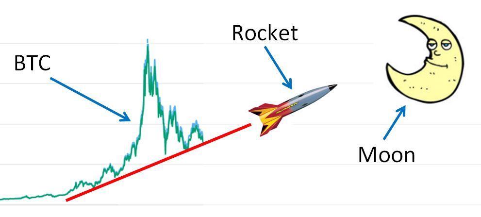 large investors in bitcoin