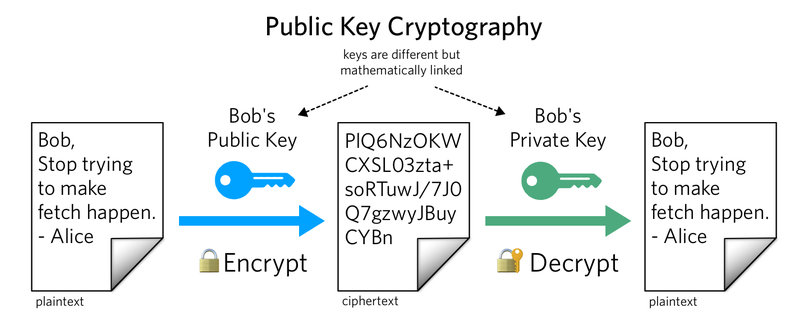 What is a public key of a cryptocurrency wallet (Bitcoin address