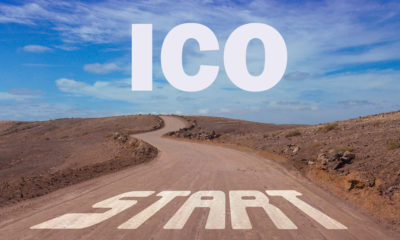 Evaluating an Initial Coin Offering Investment